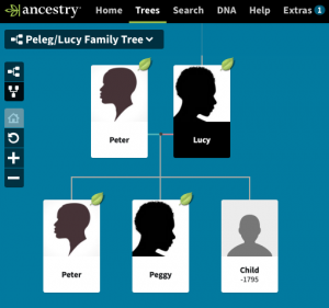 Sample Ancestry.com Family Tree